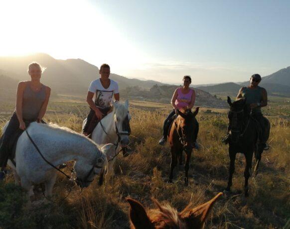 5 SPORTIEF Wandelen met paard2