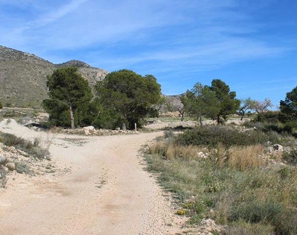 bed-and-breakfast-spain-la-canalosa-casa-algezar-activities-hiking-walking